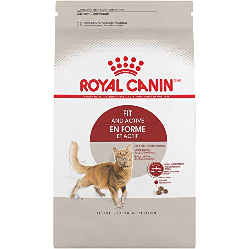 Royal Canin Feline Health Nutrition Adult Fit 32 Dry Cat Food