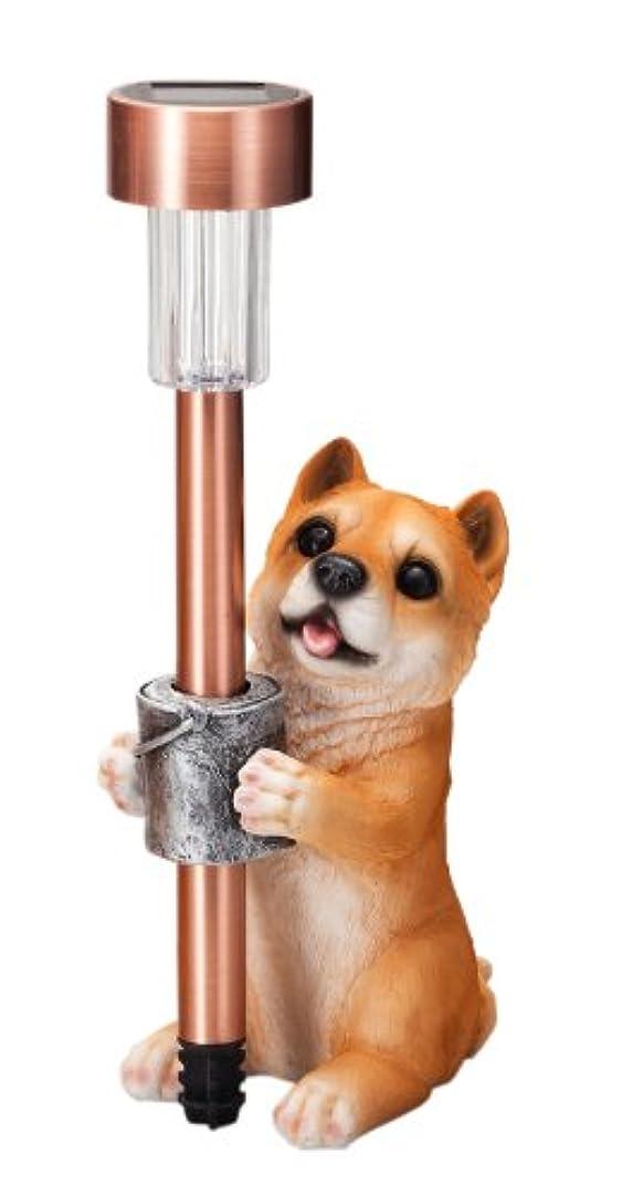 考案する水没ブランクエイチツーオー 子犬付ソーラーライト 柴犬 H835
