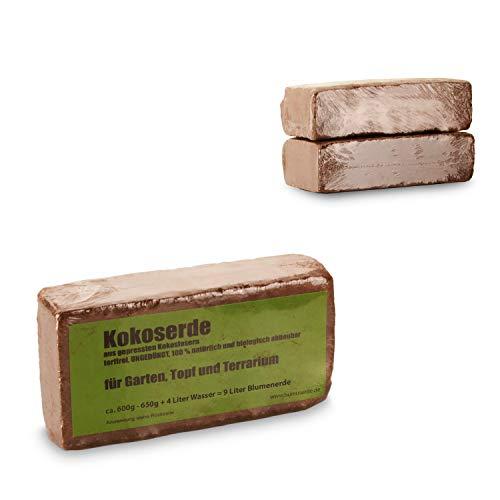yayago Humusziegel - Kokoserde -gepresste Blumenerde aus Kokosfasern - torffrei, ungedüngt, 100{1948c5d106c2071f326a12b0f92671dc4a3fc6487b17c93e125dd1122e494922} natürlich und biologisch abbaubar - für Garten, Topf und Terrarium 2 x 650 g