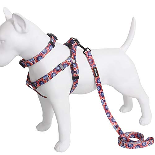 Dog Collar Harness Leash Set,Adjustable Basic Collar Halter Vest Harness Back Clip with Heavy Duty 5FT Anti-Twist Leash for Extra Small Medium Large Breed Dogs Training Easy Walk Running Hiking
