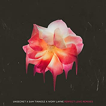 Perfect Love Remixes