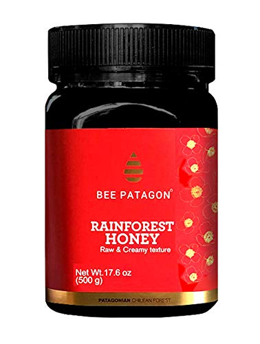 Bee Patagon Rainforest Raw Honey – Pure Creamy Raw Honey from Patagonia – Unprocessed Organic Bio Honey – Unpasteurized Floral Chilean Honey Jar – Antibiotic Free Honey – 17.6oz. / 500g