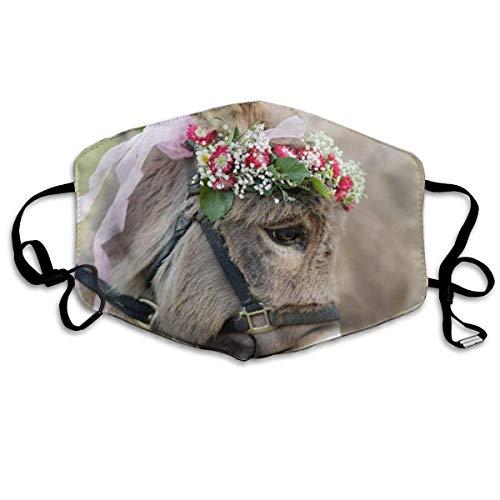 Anti-stof en anti-wind gezichtsbedekking leuke ezel met verstelbare mondbedekking voor slingers.