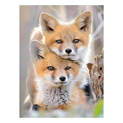 Demarkt Fox 5D - Juego de Pegatinas para Pared