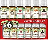 Set Of 6 Seasonal Favorites - Including sugar cookie (sweet vanilla cookie aroma), gingerbread (warm sweet smell of gingerbread cookies), Christmas wreath pine (fresh Christmas tree fir scent for the holiday), peppermint (bold sweet flavor of pepperm...