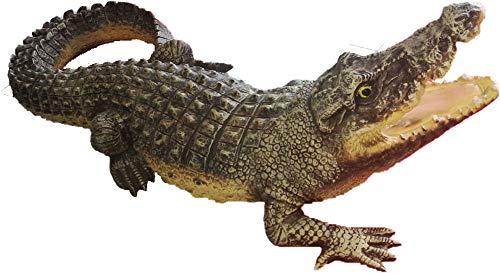 Crocodile avec mixte ouvert 90 cm de long