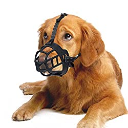 When Should Your Dog Use a Dog Muzzle? Dogsized