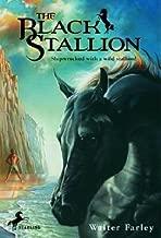 The Black Stallion [BS BLACK STALLION]