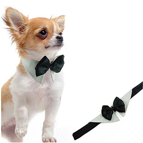 L-Peach Haustiere Fliege Schleife Kostüm Verstellbare Hunde Krawatte Hund Katze Welpen Hundekrawatte für Hochzeits Partei Gentleman Anzug M