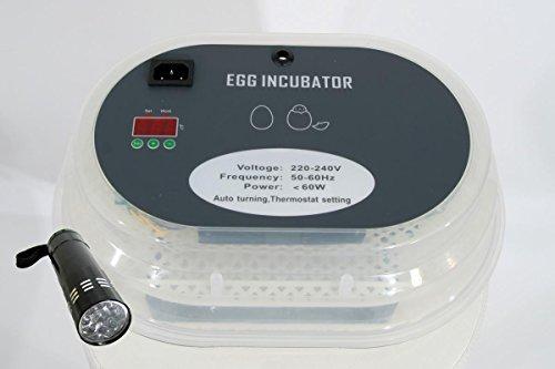 Qubeat Completo BK incubadora AUTOMÁTICA 9, 9-12 Huevos de gallina, máquina de eclosión, criador, nacedora