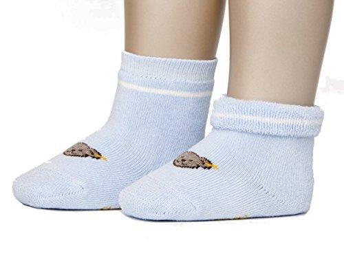 Steiff Baby Socken mit Teddy Geschenkkarton Baby in Box (50/56, Hellblau)