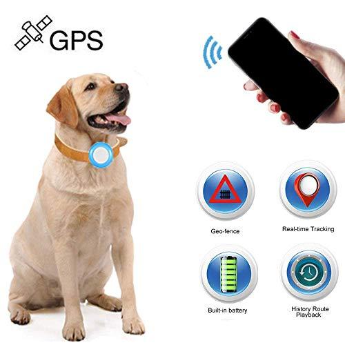 Rastreador GPS para niños, Perro, Gato, Winnes GPS, rastreador localizador para Mascotas Mini Tracker GPS localizador antipérdida, Impermeable, rastreador para Mascotas, Perros y Gatos.