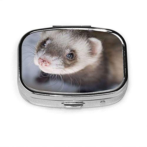 DODOD GRTING Ferret Close Up Pill Case 2 Compartment Medicine Case Portable Travel Square Pill Box Organizer for Pocket Purse Daily Needs