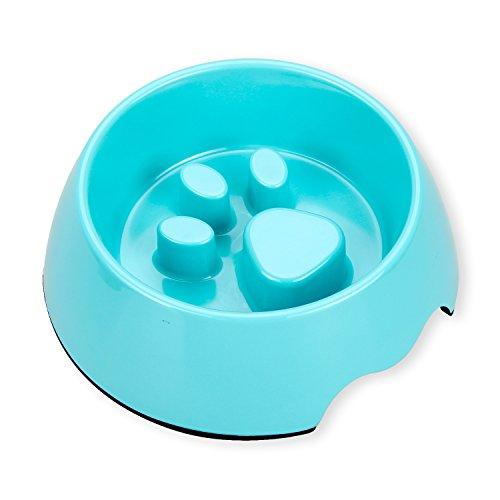 Payxuan Ciotola per Cani Antiscivolo Anti Ingozzamento per il Piccolo Cane e Gatto,Blu