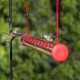 Bob's Mejor Comedero De Colibríes Para Exteriores,Alimentador De Aves Colgante,Polivinílico-carbonato Alimentador De Aves De Tubo Con Hole,Rojo Transparente Comedero Para Pájaros D-Transparente 40x3x3