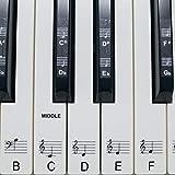 Juego de pegatinas para las teclas del piano o el teclado, hasta 61teclas, en blanco y negro, polip...