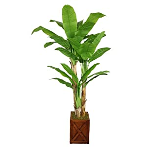 Vintage Home 81″ Tall Banana Real Touch Leaves in Planter Artificial Tree, Green