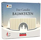 BRUBAKER Tree Candles - Pack of 20 - Champagne - 9.5cm - Pyramids & Chimes