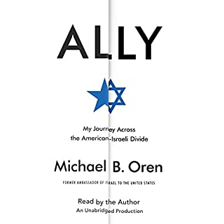 Ally audiobook cover art