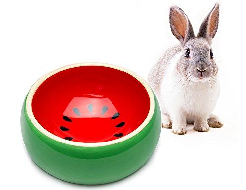 Mkono No-Tip Ceramic Rabbit Food Bowl Feeder for Guinea Pig Hamster Chinchilla, Watermelon