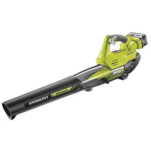 Ryobi Souffleur 18V One Plus Turbo Jet Brushless - 1 Batterie 4,0Ah - 1 Chargeur Rapide - RY18BLXA-140
