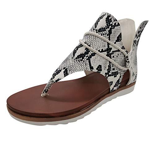 Zehentrenner Damen Sandalen Reißverschluss Schuhe Frauen Casual Posh Vintage Leopard Flip Flop Bequem (39,1Beige)