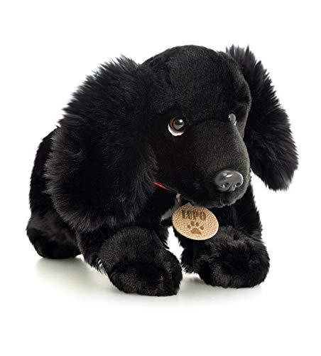 Keel Lupo Der Schwarze Cocker Spaniel Hund-weicher Plüsch-Spielzeug 35cm von Toyland