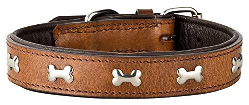 Schnüffelfreunde Collar de Perro de Cuero Lisa con Aplicaciones de Huesos Metálicos (XXL - 55-65cm, Marrón)