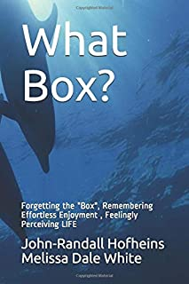 What Box?: Forgetting the Box, Walking into Nothingness, Getting Surprised by Everything (New Frequency Fables)