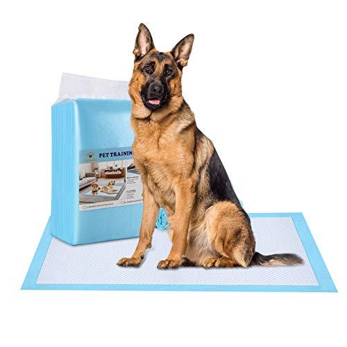 Ownpets Dog Training Pad, auslaufsichere 6-Lagen Pet Potty Training Pads Pee Pads mit schnell trocknender Oberfläche für Haustiere, Welpen, Erwachsene, kranke und alternde Hunde