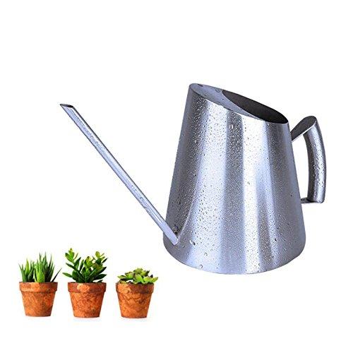 WANGXN Arrosoir Pot De Douche Or Plantes en Pot Fleurs Herbes Bouilloire Maison Bouche INOX Pot D'arrosage D'intérieur,Silver