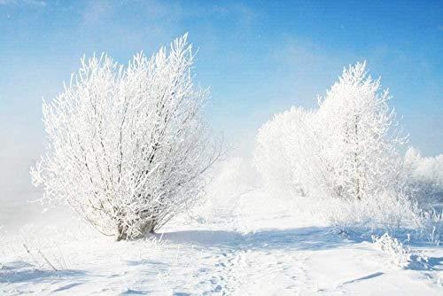 ZPCBca Juego de Papel AA Rompecabezas 1000 Arbustos congelados (70 * 50cm)