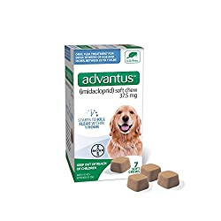 Chewable flea treatment for dogs and puppies