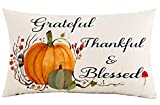Jimrou Throw Pillow Cover 12x20 inches Festival Gifts Thankful & Blessed Hand Painted Watercolor Fall Pumpkins Give Thanks Cotton Linen Decorative Home Sofa Chair Car Throw Pillow Case Cushion Cover