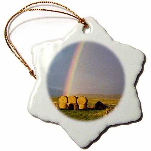 3dRose ORN 91745_ 1Rainbow über Heu Ballen, Judith Serie, Montana US27cha1322Chuck Haney Schneeflocke Porzellan Ornament, 3Zoll