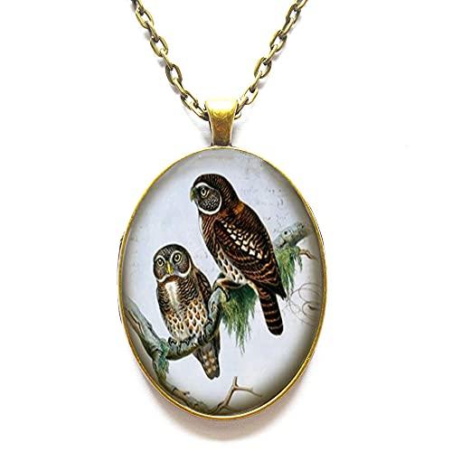 Collar con colgante de búho de cristal, diseño de pájaro victoriano, collar de búho, collar de búho de plata, regalo de joyería, colgante caprichoso, collar de diario, regalo de vacaciones, # 204