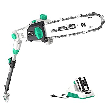 Best Cordless Pole Saw Reviews In 2020 - Top 10 Picks With Ultimate Buying Guides - Tools Diary