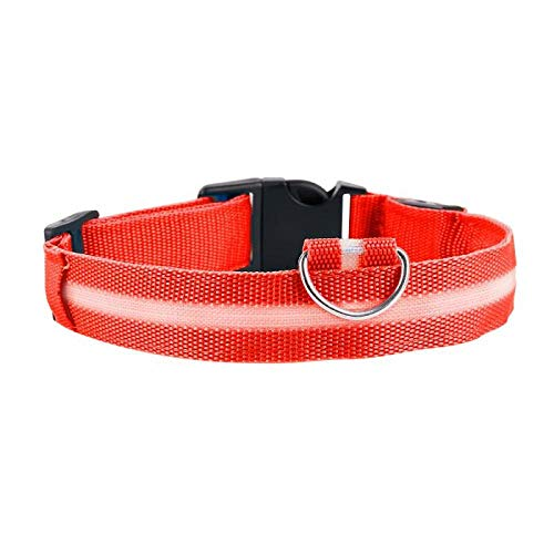 ZYYC 5 Sizes Battery Led Dog Collar Anti-Lost/Car Accident Avoid Collar For Dogs Puppies Dog Cats Collars Luminous Pet Supplies-red_34-41cm