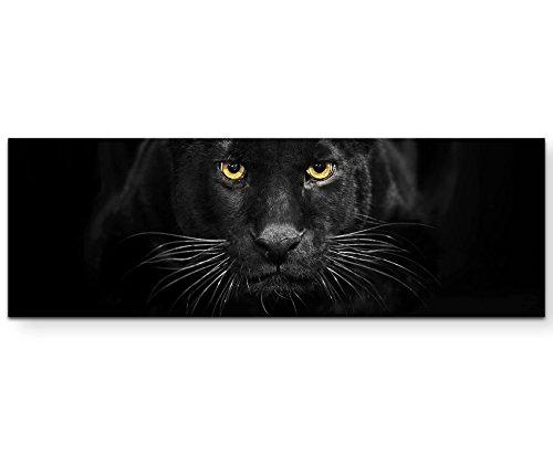 Leinwandbilder   Bilder Leinwand 120x40cm schwarzer Panther