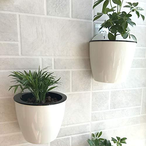 Kentop Selbstbewässernde Pflanze Blumentopf Wand Hängende Lazy Pflanzer für Zuhause Büro Garten - 5