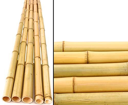 bambus-discount.com Bambusrohr gelb, Moso Bambus, Gebleicht, Durch. 4,5-6cm, Länge 200cm