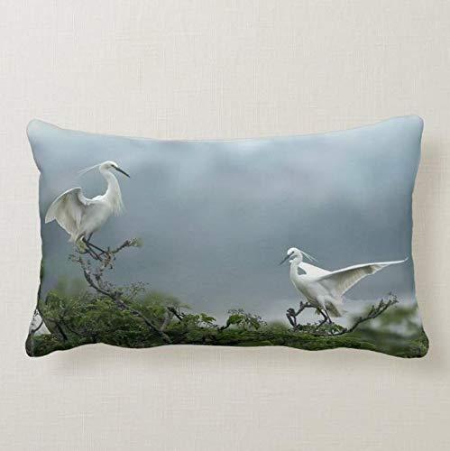 perfecone Home Improvement Funda de almohada para sofá y coche, 2 grúas blancas, 1 paquete de 50 x 65 cm