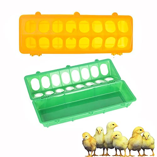 Flip Top Poultry Feeder with 16 Holes on Floor No Mess No Waste for Small Poultry Pigeon Quails Chick Ducklings Birds,2 Pieces(Yellow,Green)