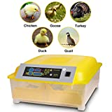 Currens Egg Incubator for Hatching Chicken Duck Goose Quail Fertilized Eggs with Automatic Turning Poultry Hatcher,Temperature Humidity Control 80W US Plug[US STOCK]