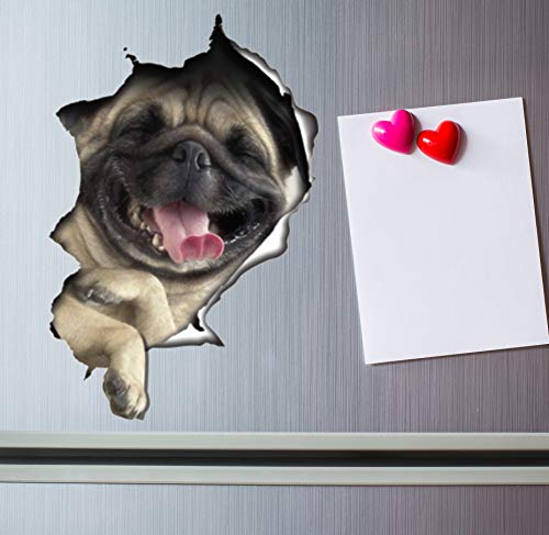 Winston & Bear 3D Cat Stickers - 2 Pack - Laughing Pug Decals for Wall - Stickers for Bedroom - Fridge - Toilet - Room - Retail Packaged