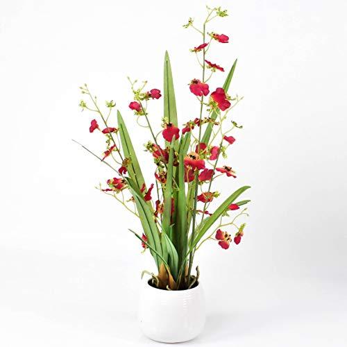 artplants.de Set 2 x Orchideen Oncidium in Töpfchen, 2 Zweige, pink - weiß, 50cm - Kunstorchideen - Orchideendeko