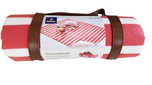 TCM Tchibo Picknickdecke Decke Picknick wasserabweisend Fleecedecke