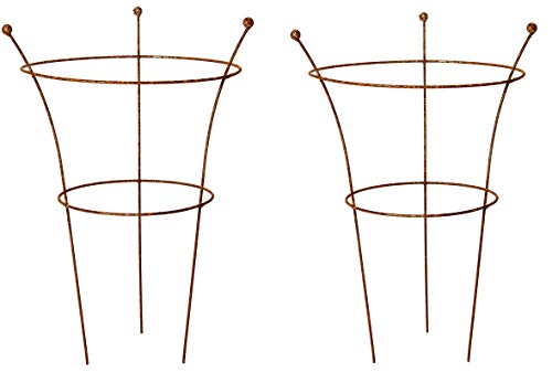 Ruddings Wood Set of 2 x Natural Rust Metal 3 Leg Large Herbaceous Peony Plants Support Rings (79cm high x 50cm diameter) Garden Rusted Flower Plant Grow Through Cage Frames