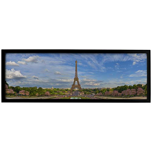 Neil Enterprises, Inc Black Panoramic Picture Frame (24' x 8')