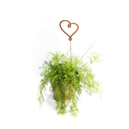 ecosoul Décoration de jardin en forme de cœur attaché sur tige - Pot de fleurs en métal rouillé - 80 cm